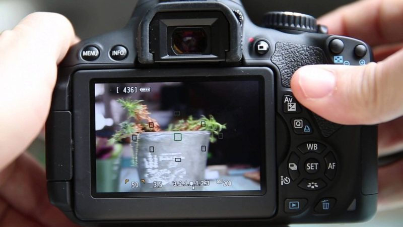 Canon 首部加入觸屏功能的單反相機是入門級的 650D。