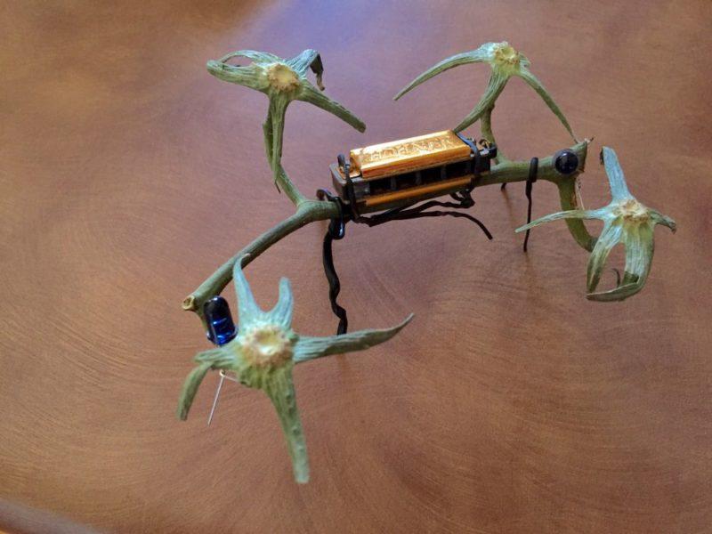 Organic Vegan Quad Copter Drone 升級版的「有機純素四軸無人機」之模樣。