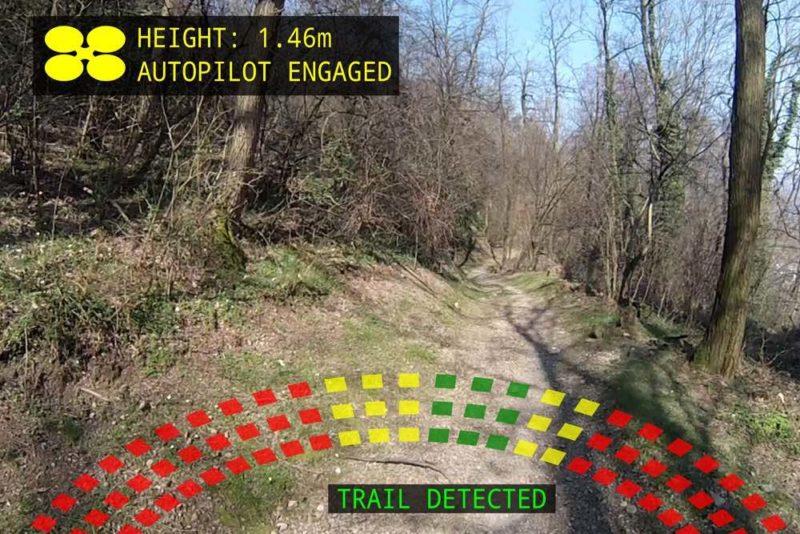 人工智能軟件能偵測到森林中的步道。