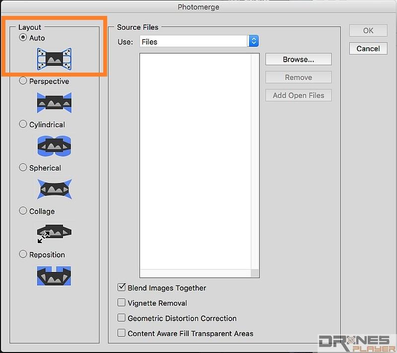 Layout 可按相片之拍攝方式去選擇,如果不太了解相片來源,可先以 [Auto] 作測試。