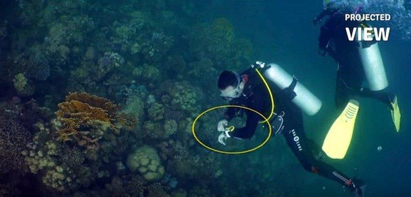 潛水員可藉由腕上特製的智慧型手帶,遙控 iBubble 進行拍攝。
