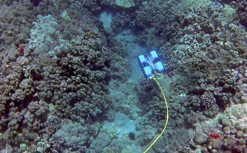 BlueROV2 水中無人機可深潛至海底 100 米。