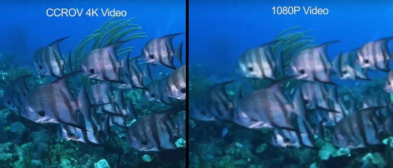 廠方提供的 CCROV 水中無人機 4K 和 1080p 水底拍攝效果比較。