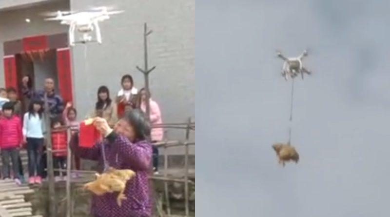 無人機空運紅包、母雞