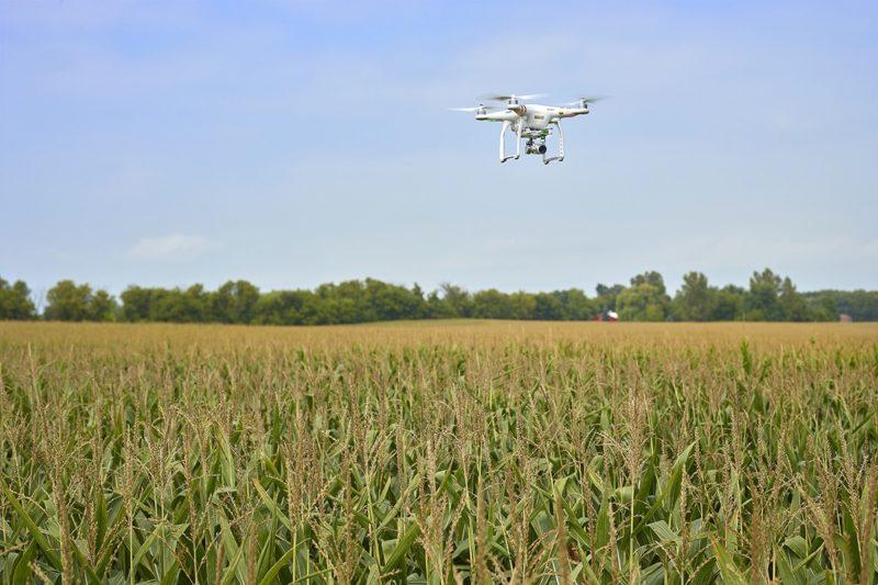 Phantom 航拍機加裝 Sentera NDVI 感應器,便能變身成精準農用測量工具。