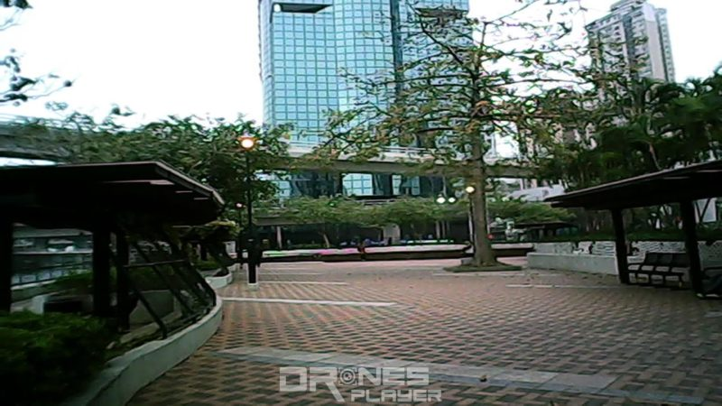 拍照測試:DHD D2 的拍攝影像有點模糊,樹木枝葉的細節盡失。