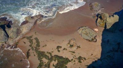 全球首齣航拍色情片《Drone Boning》