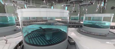 BAE Systems 培養缸中化學合成戰鬥機