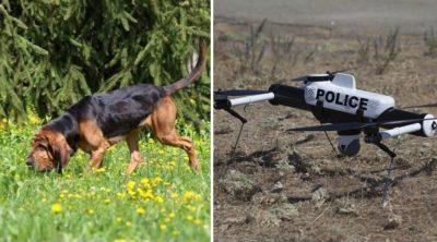 狗與無人機能成出勤拍檔嗎?