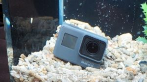 GoPro HERO 5 Black 具裸機防水功能,在無需加裝防水殼的情況下,已可潛入 10 米水底。