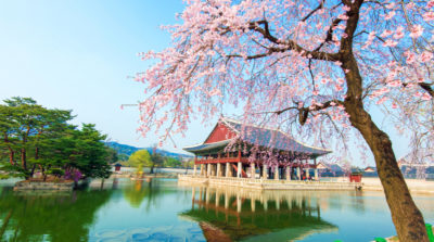 korea feature image