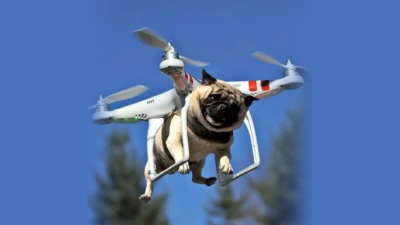 Dog_Fly_on_Drone