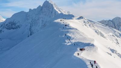 小熊雪山攀坡幾度滑落險墮崖 驚險時刻無人機還添亂?