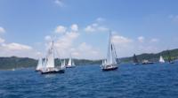 空拍白海豚一機墜海 Mavic 2 Pro 攝基隆帆船賽同告「殉職」
