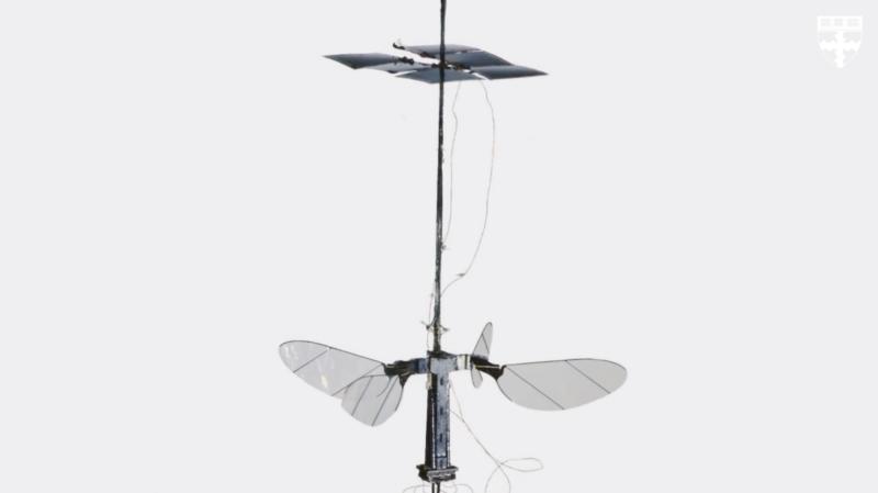 美哈佛大學研製不足 1 克之無人機 實驗室內成功試飛