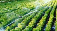 YAMAHA 設 25 所無人機學校 提升農業生產力