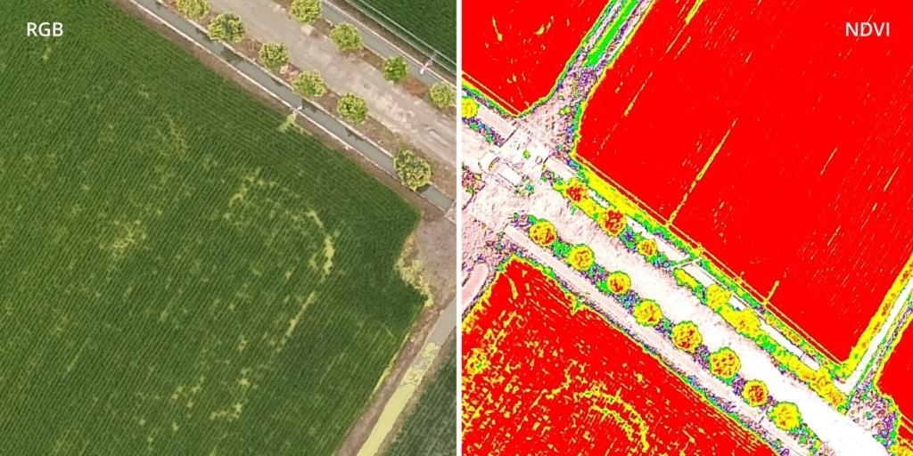 DJI發佈植保機 P4 Multispectral 主打精準農業與高效土地管理