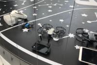 大陸購入 DJI Mavic Mini 香港可飛 帶去日本不是換電池、遙控器就行