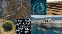 BBC 播映七大洲自然紀錄片 無人機助捕捉神奇時刻和奇觀