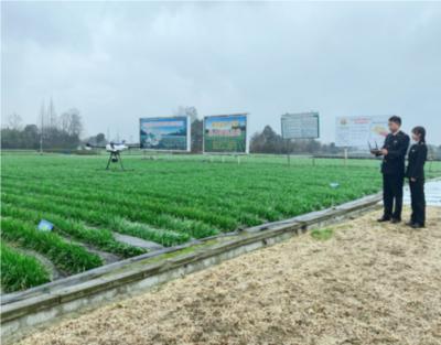 成都海關出動無人機監管供港韭菜基地 提高作業效率