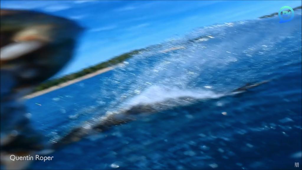 不要拍我! 鱷魚「衝出海面」突襲低飛航拍機
