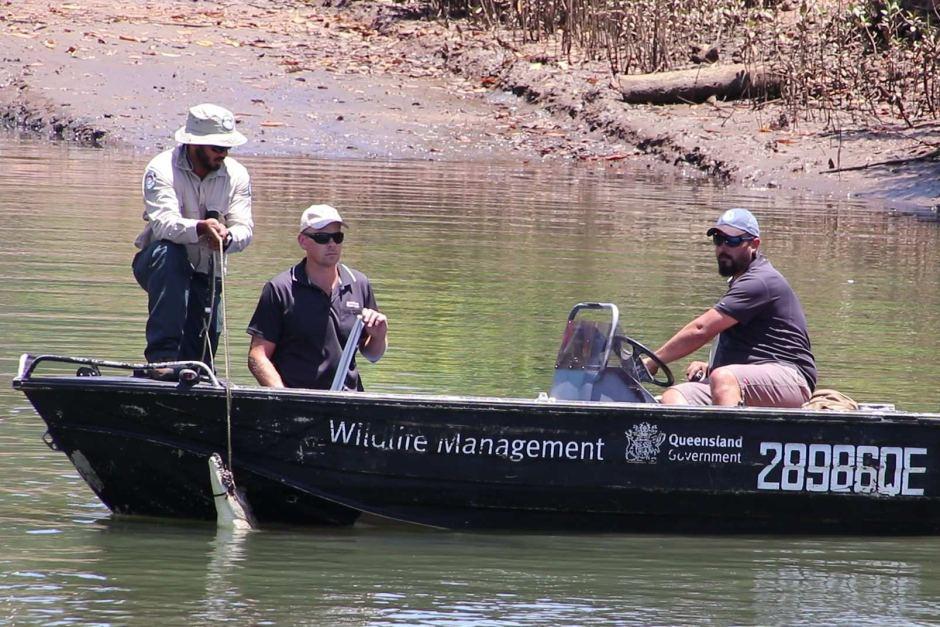 澳洲用無人機誘捕「問題鱷魚」 是怎麼做到的?
