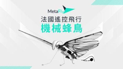 超輕巧仿生無人機 MetaFly 機械蜂鳥降落台灣 超額募資近 3 倍