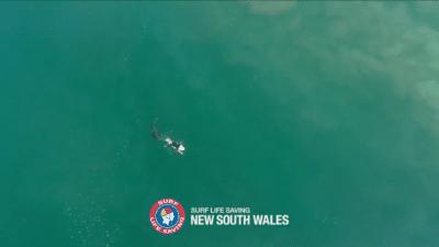 救生無人機「目擊」衝浪客與鯊魚擦身而過 看畫面已足夠令人屏住呼吸