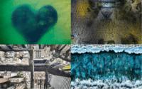 意大利攝影獎設疫情下生活組別 港 200 萬人遊行航拍照片奪獎